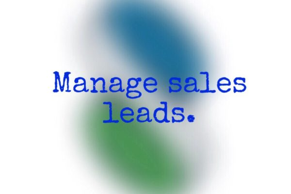 manage sales leads tips
